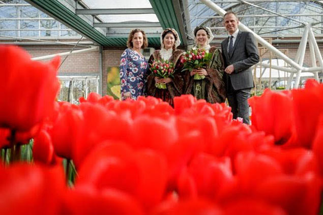 Romantiek in de Keukenhof