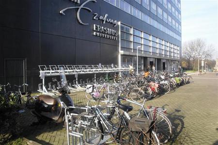 Topstudies in Rotterdam zijn economie, management, rechten, sociale wetenschappen, geneeskunde en gezondheid. De Erasmus Universiteit Rotterdam is een onderwijsindustrie op zich.
